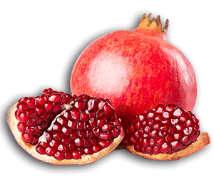pars fame Pomegranate